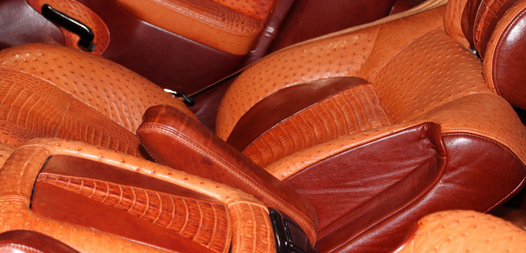Ostrich and Caiman Car Interior in Orange