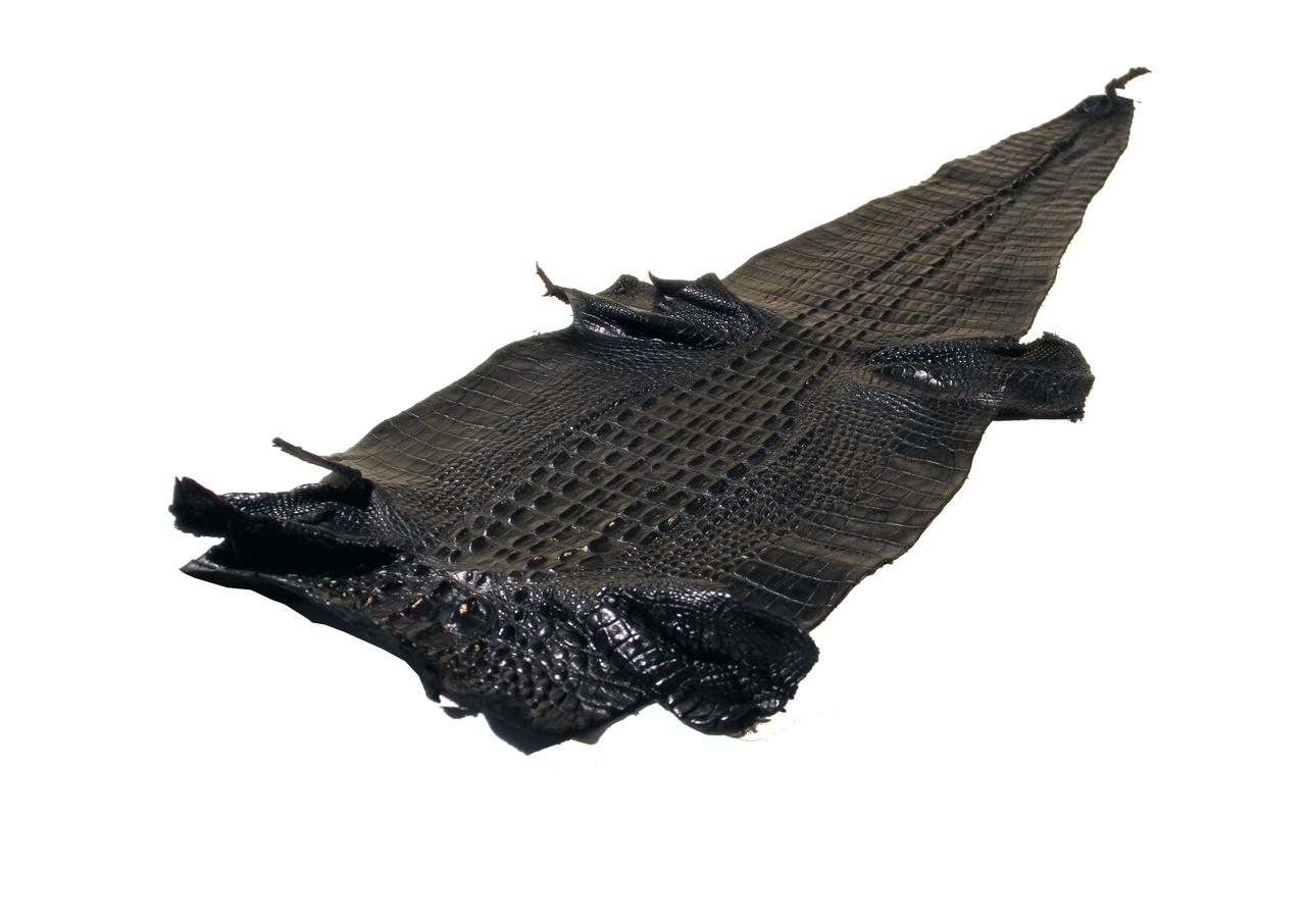 Genuine Alligator Hornback Skin - Millennium Waxy Finish in Black